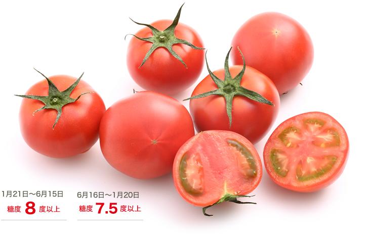 高濃度トマトアメーラ