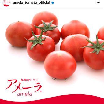 アメーラ公式Instagram
